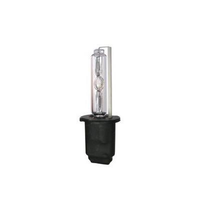 Lot de 2 Ampoules Xenon H1